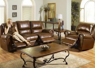 Living room interiors leather sofa