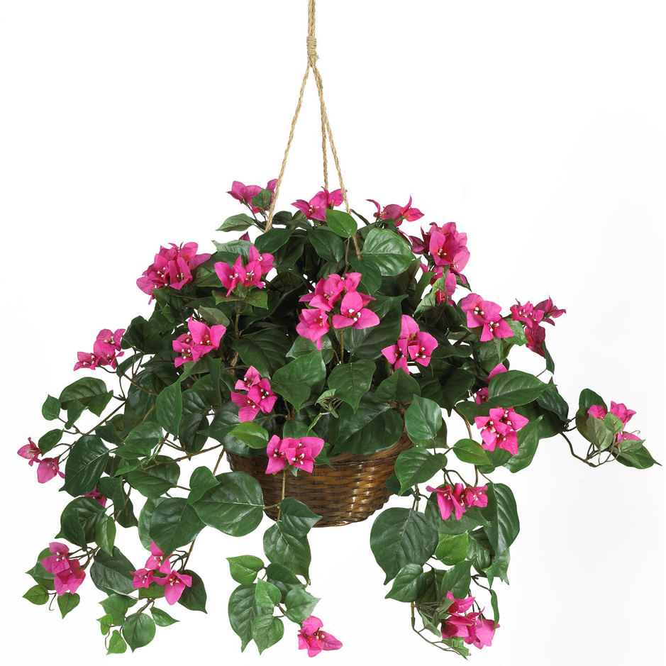 Garden Hanging Basket Decorating Ideas Interior Design Ideas