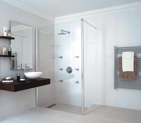 limited furniture small bathrom idea
