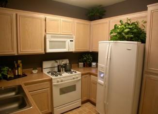 Small Kitchen Cabinet idea