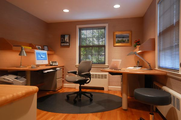 home office Revolving chairs