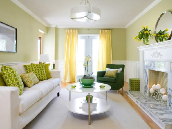 Green-Theme-small-living-room Green-Theme small living room