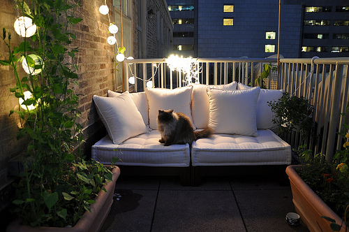 Porch Furniture (3)