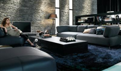 Contemporary Sofa Ideas (4)