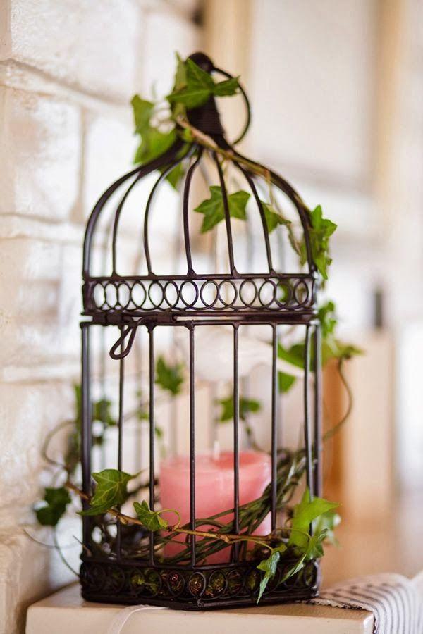 Bohemian Cage