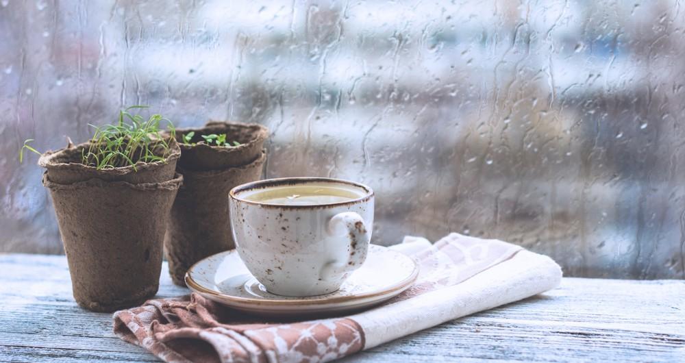 rainy-season-tips-enjoy-at-home-1000x530